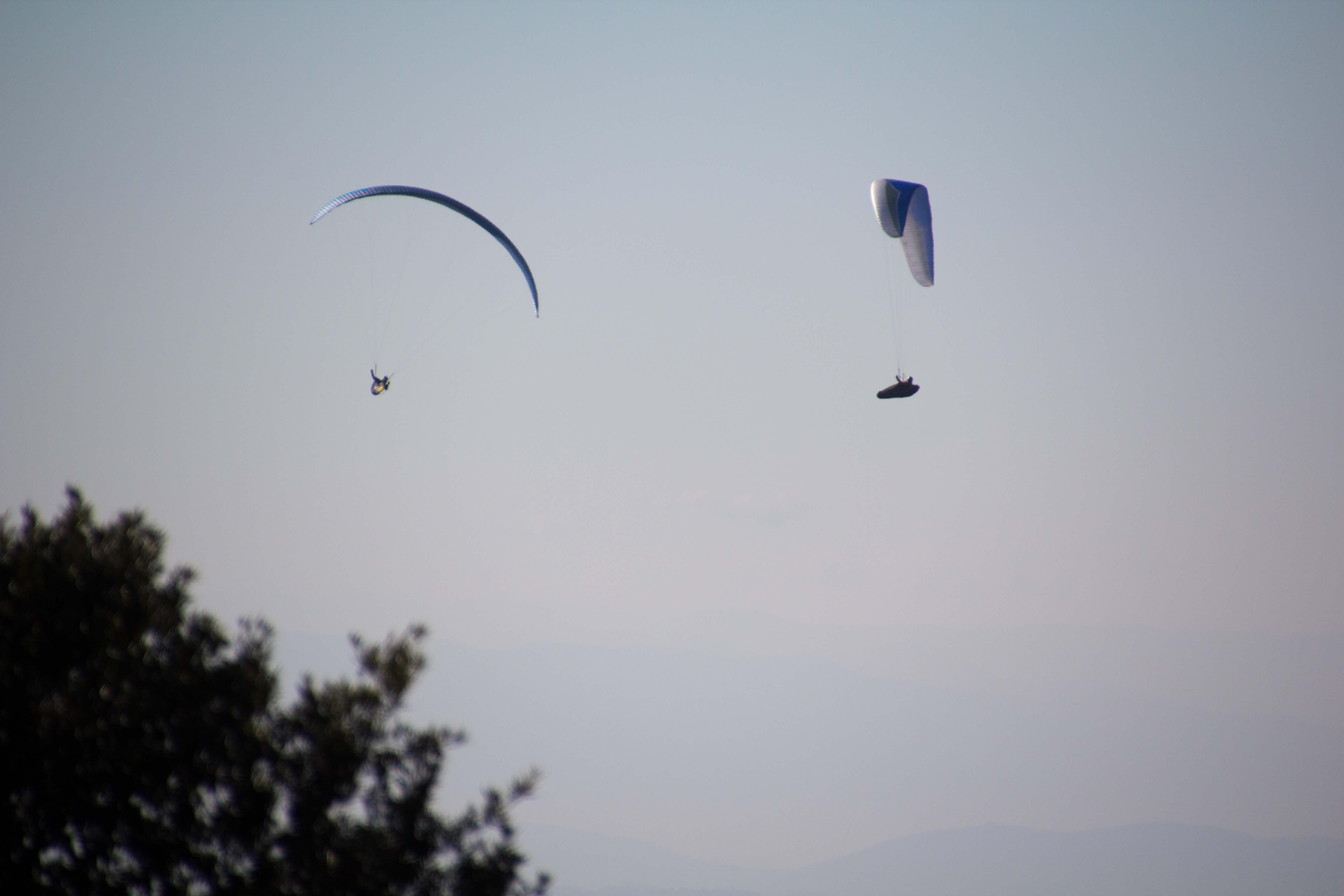 des parapentistes se régalent dans ce ciel de novembre