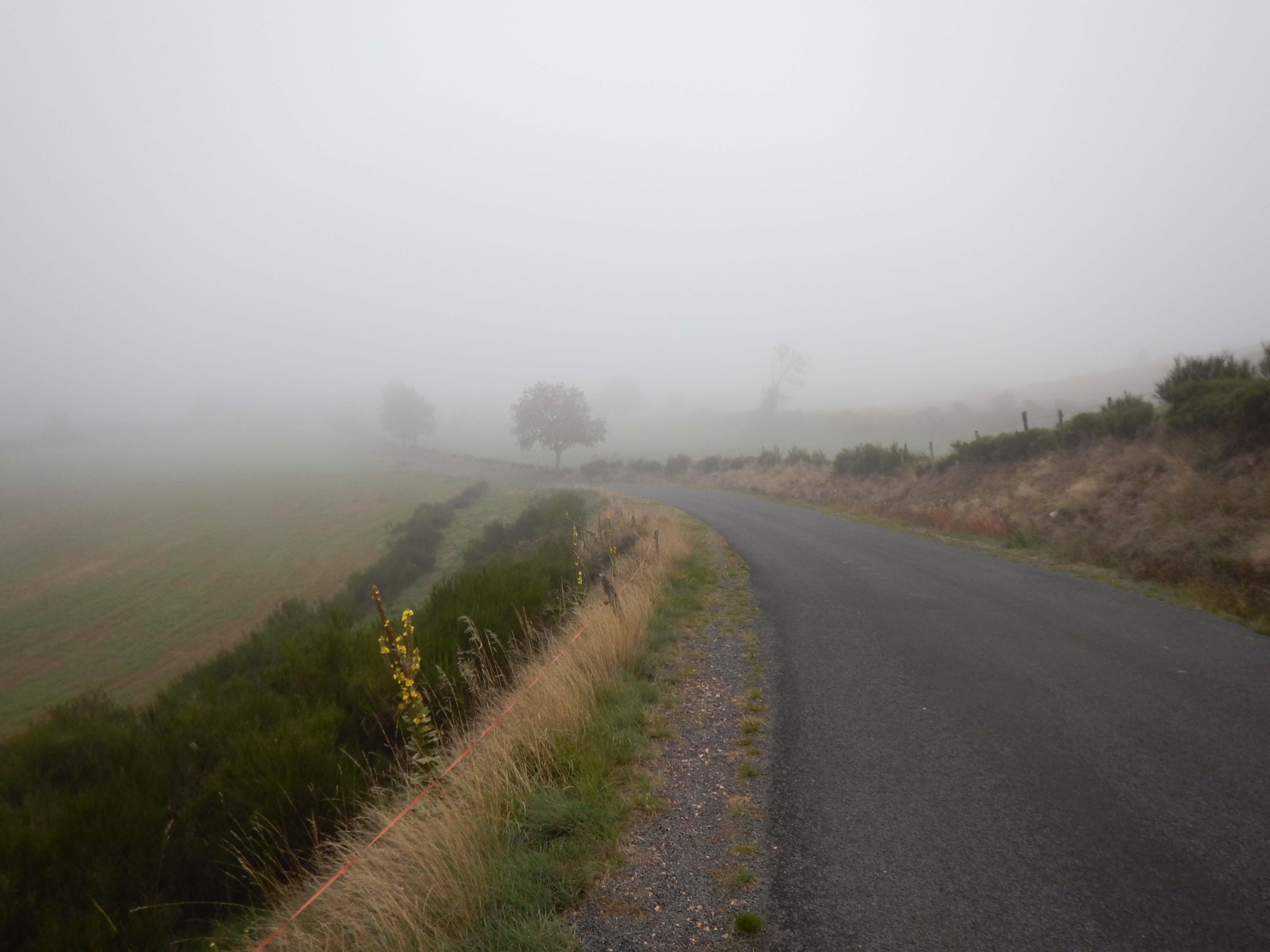 Un peu trop de routes sur le chemin de Stevenson