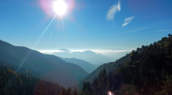 [Randonnée] La forêt de Turini