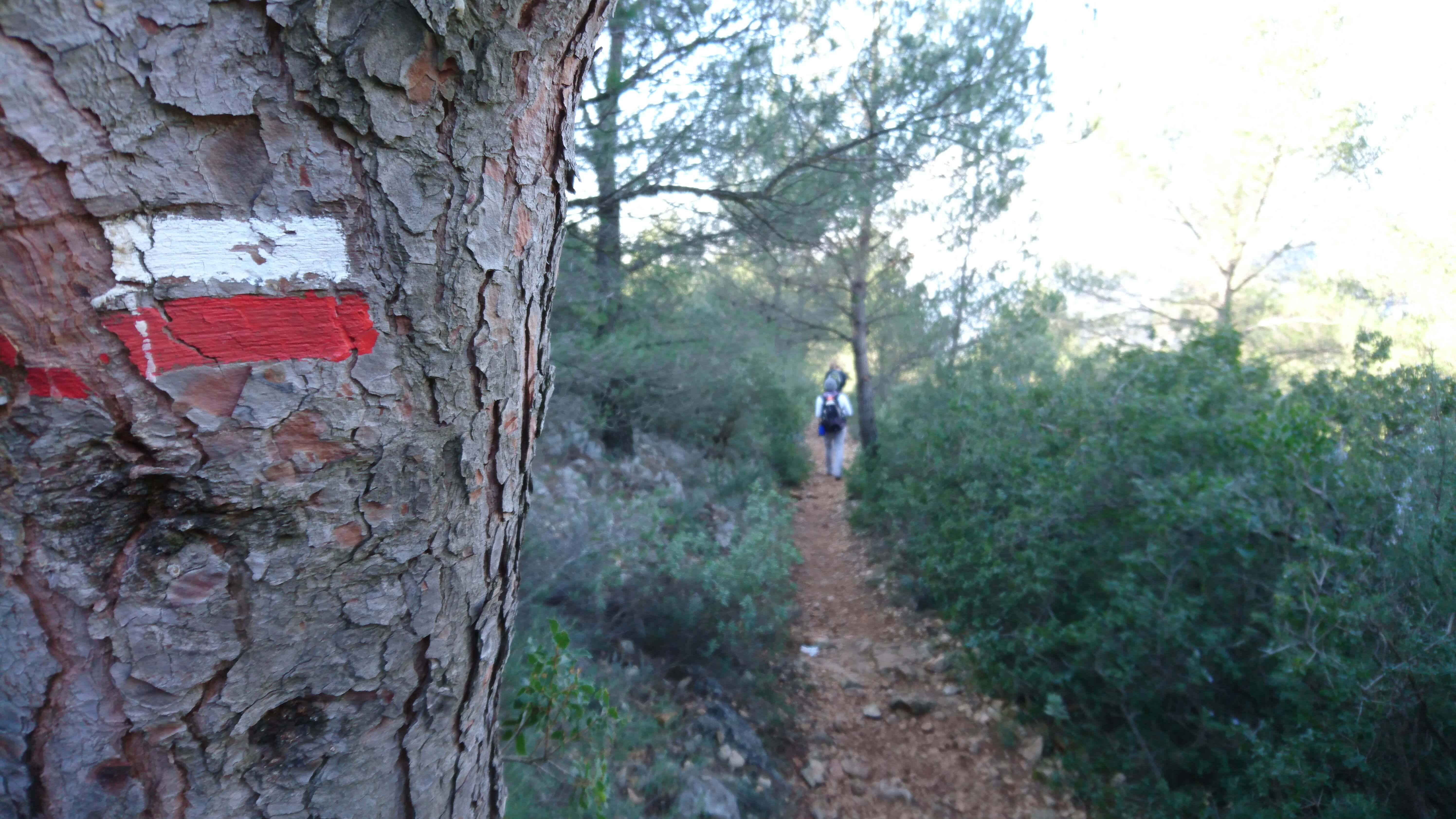 Fil rouge (et blanc) de mes randonnées, le signe des GR