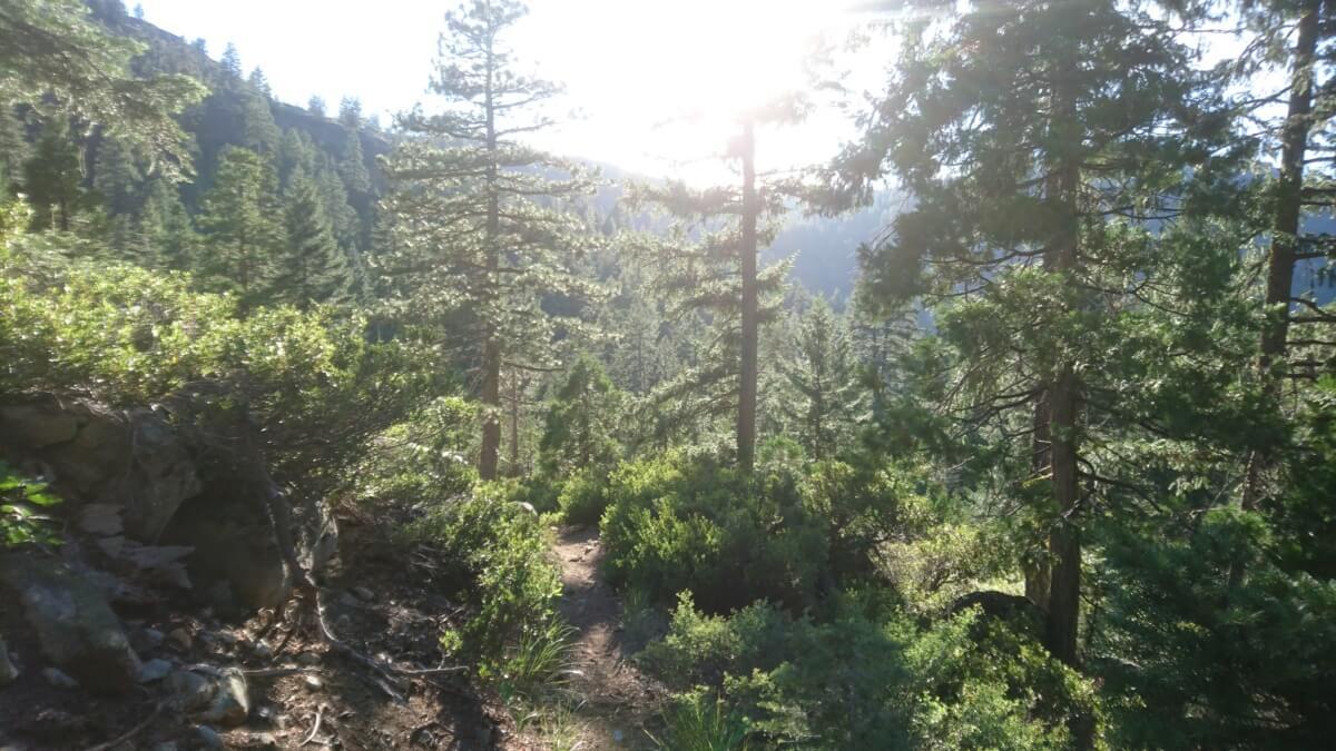 PCT jour 86 – 5 juillet – mile 1191