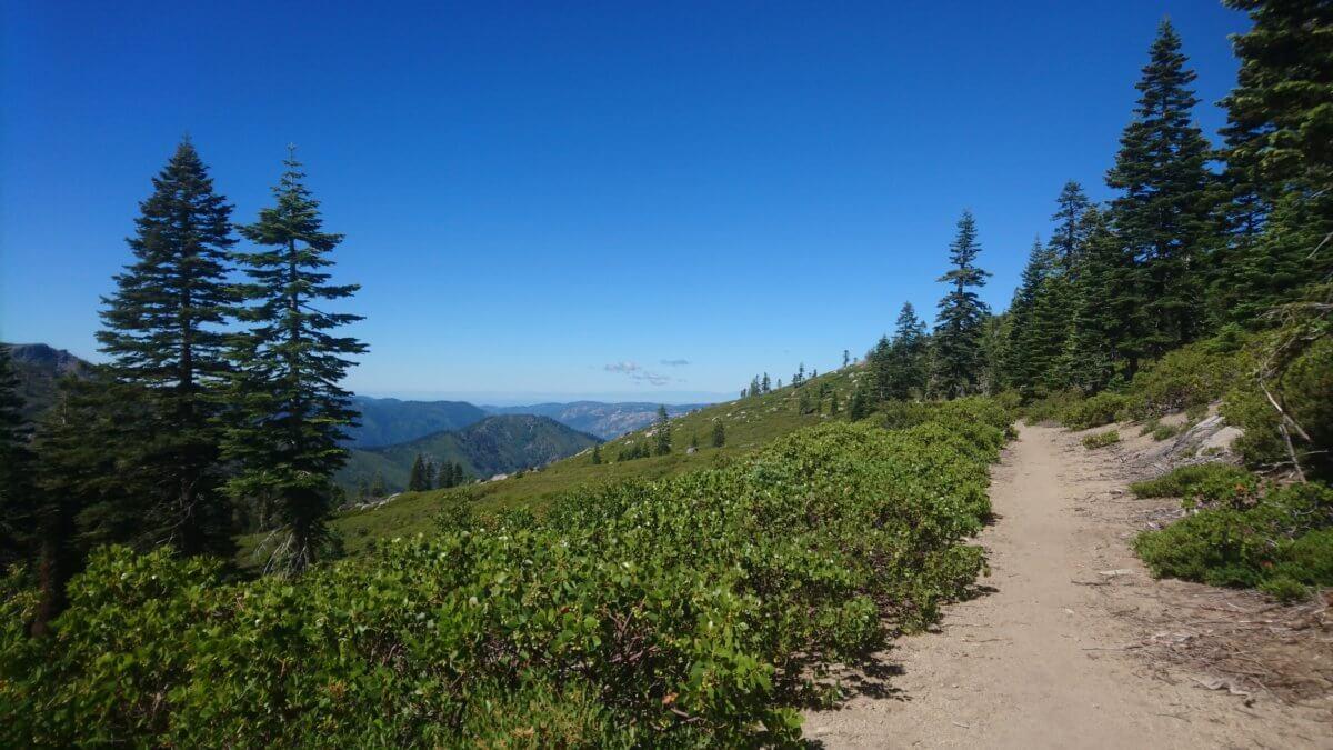 PCT jour 91 – 10 juillet – mile 1290