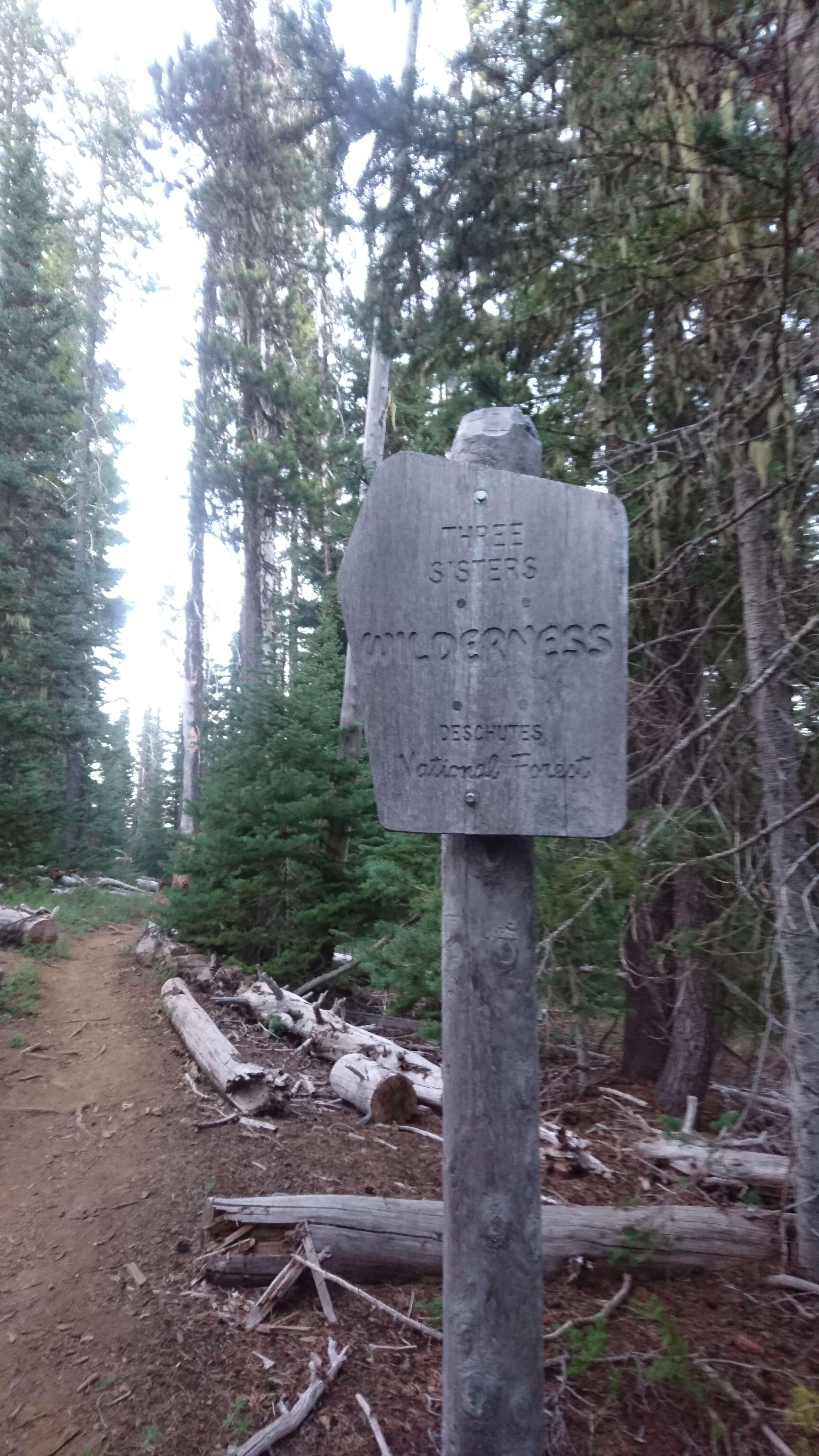 Le sentier pénètre dans le magique Three Sisters Wilderness