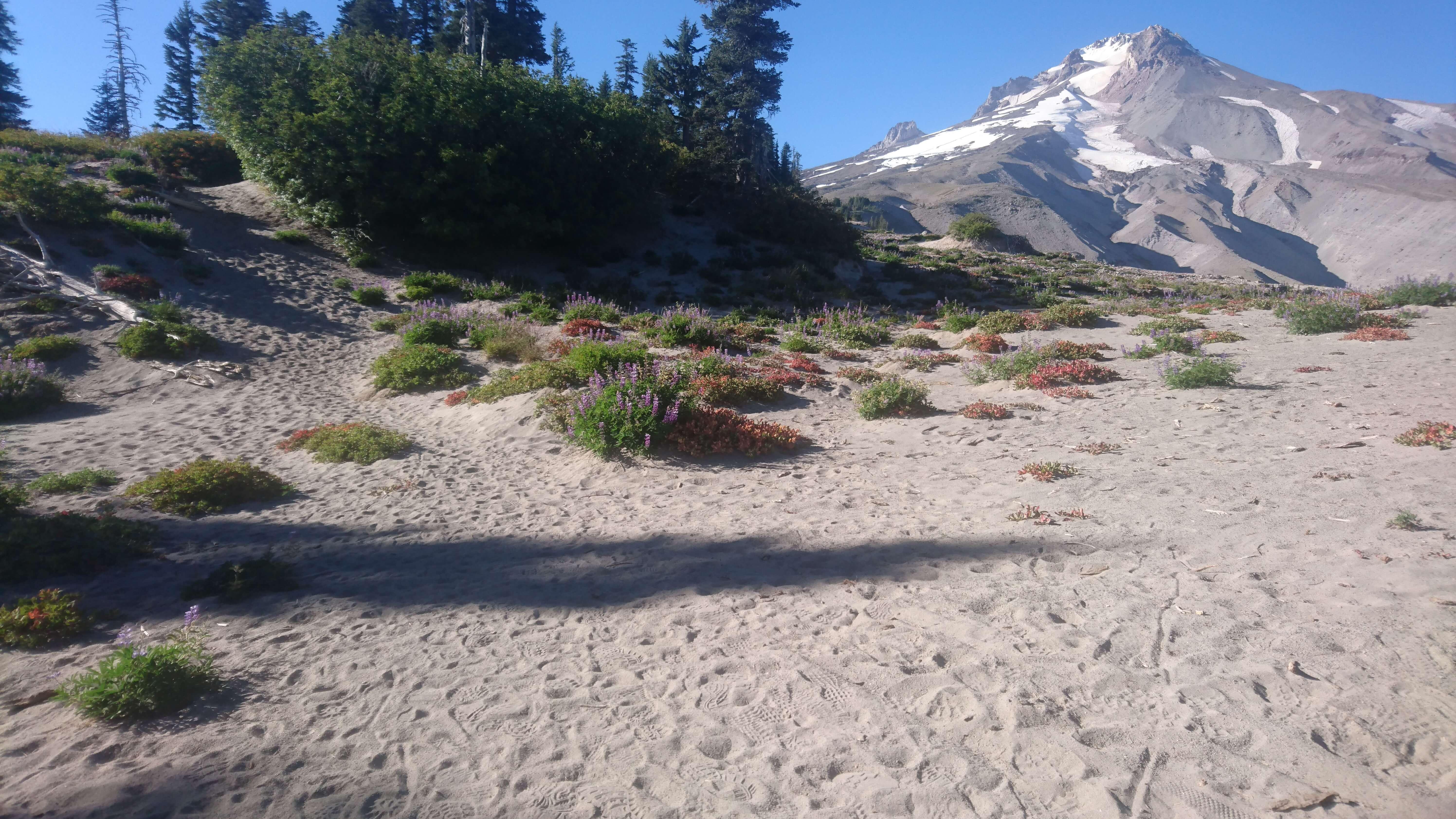 Le Mont Hood est en fait un immense tas de sable
