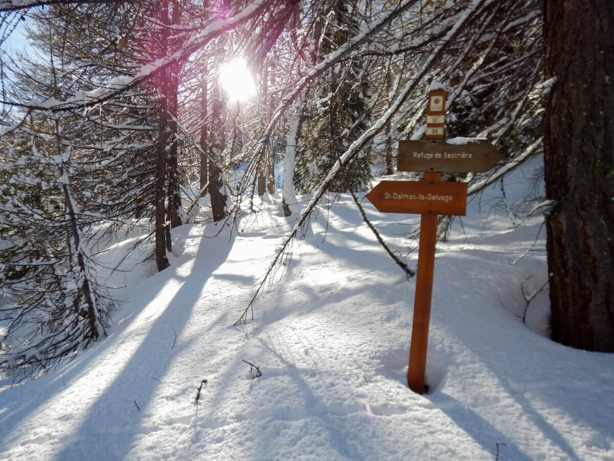 Raquettes à neige à Saint-Dalmas le Selvage